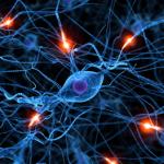 neuronamicoptico