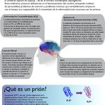 prionopatías_v3